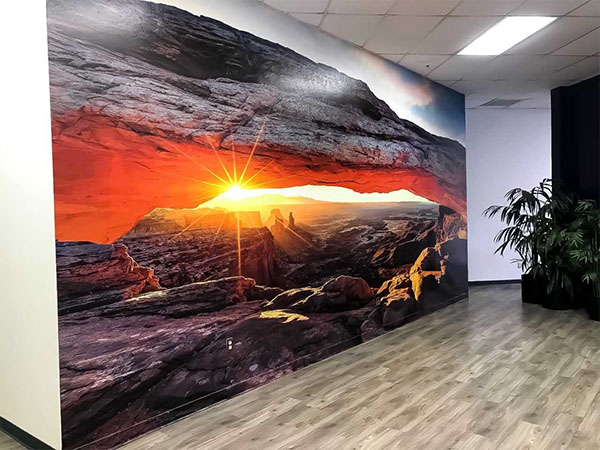 Wall Murals Graphics